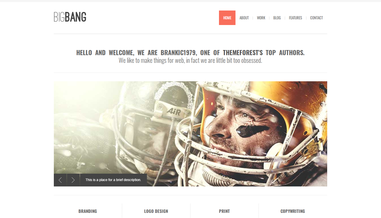 top-selling-wordpress-themeforest-theme